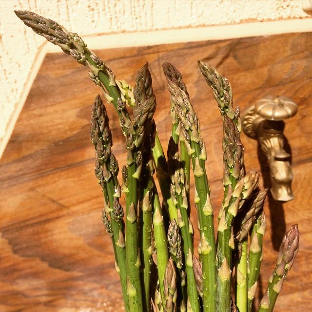 Home grown asparagus